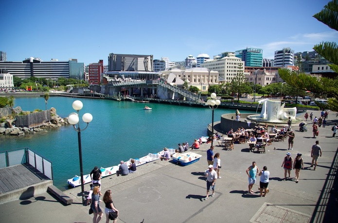 See Something Special in Wellington, New Zealand