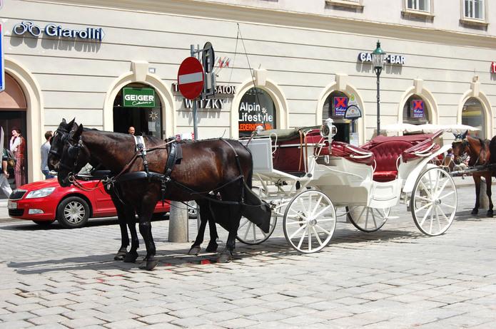 Inspiration in Vienna, Austria